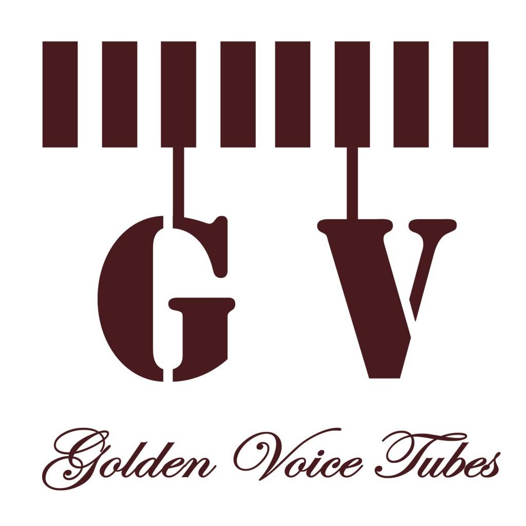 GV-MAIN PAGE